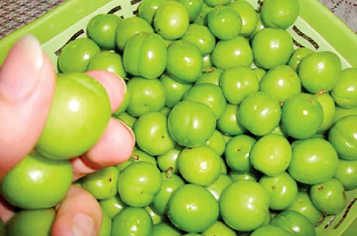 گوجهسبز، میوهای لوکس و گران