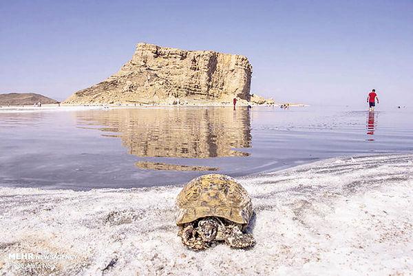 نقطه ثقل احیای دریاچه ارومیه