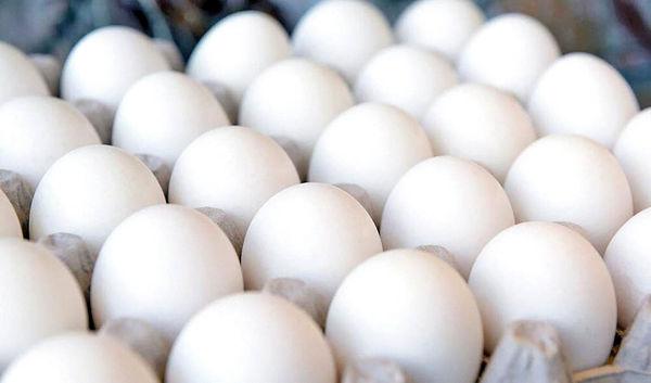 قیمت مصوب مرغ و تخممرغ تغییر نمیکند