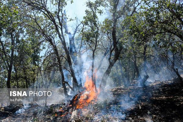 ادامه آتشسوزی در جنگلهای گچساران پس از ۳ روز