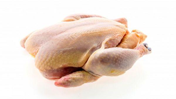 نرخ واقعی هر کیلو مرغ چند؟