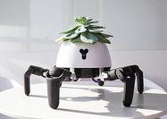 روبات باغبان