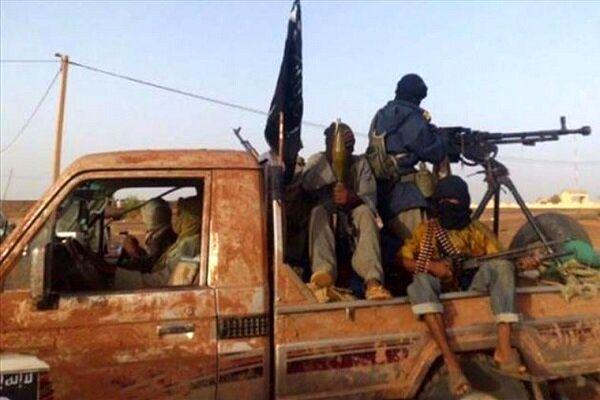 طالبان مدعی عدم حضور القاعده در افغانستان شد