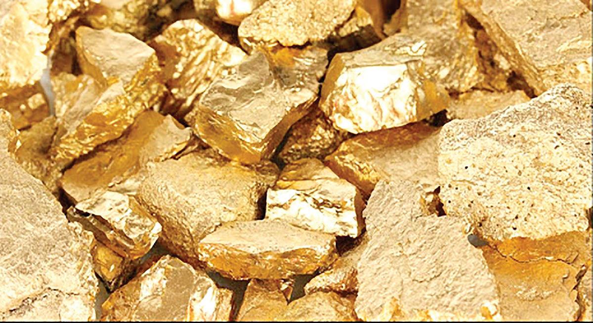 رشد تولید طلای «نورثرن استار»