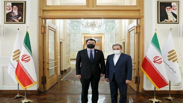 دیدار قائم مقام وزیر خارجه کره جنوبی با عراقچی
