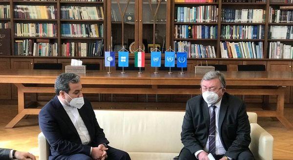 دیدار عراقچی با نماینده روسیه در سازمانهای بینالمللی