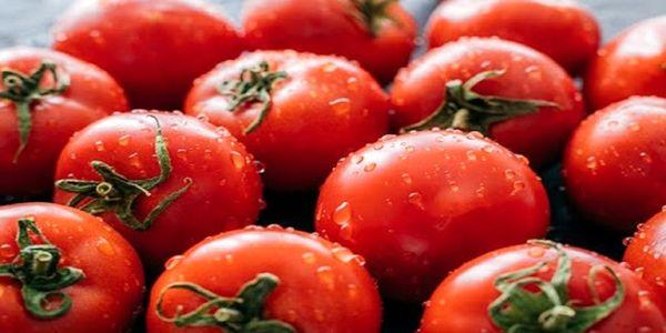 خطرات جدی مصرف بیش از حد گوجه فرنگی برای بدن