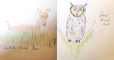 شهرت یک عکاس با نقاشیهای کودکانه