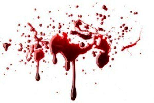 بطری آب معدنی قاتل زوج کهن سال را لو داد