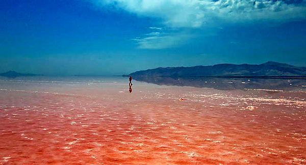 دریاچه ارومیه در افق1401