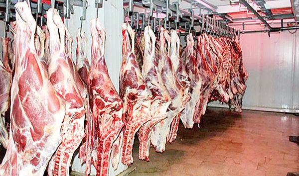 دلال بازی در بازار گوشت گوسفندی