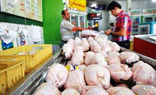 قیمت مرغ رکورد زد!